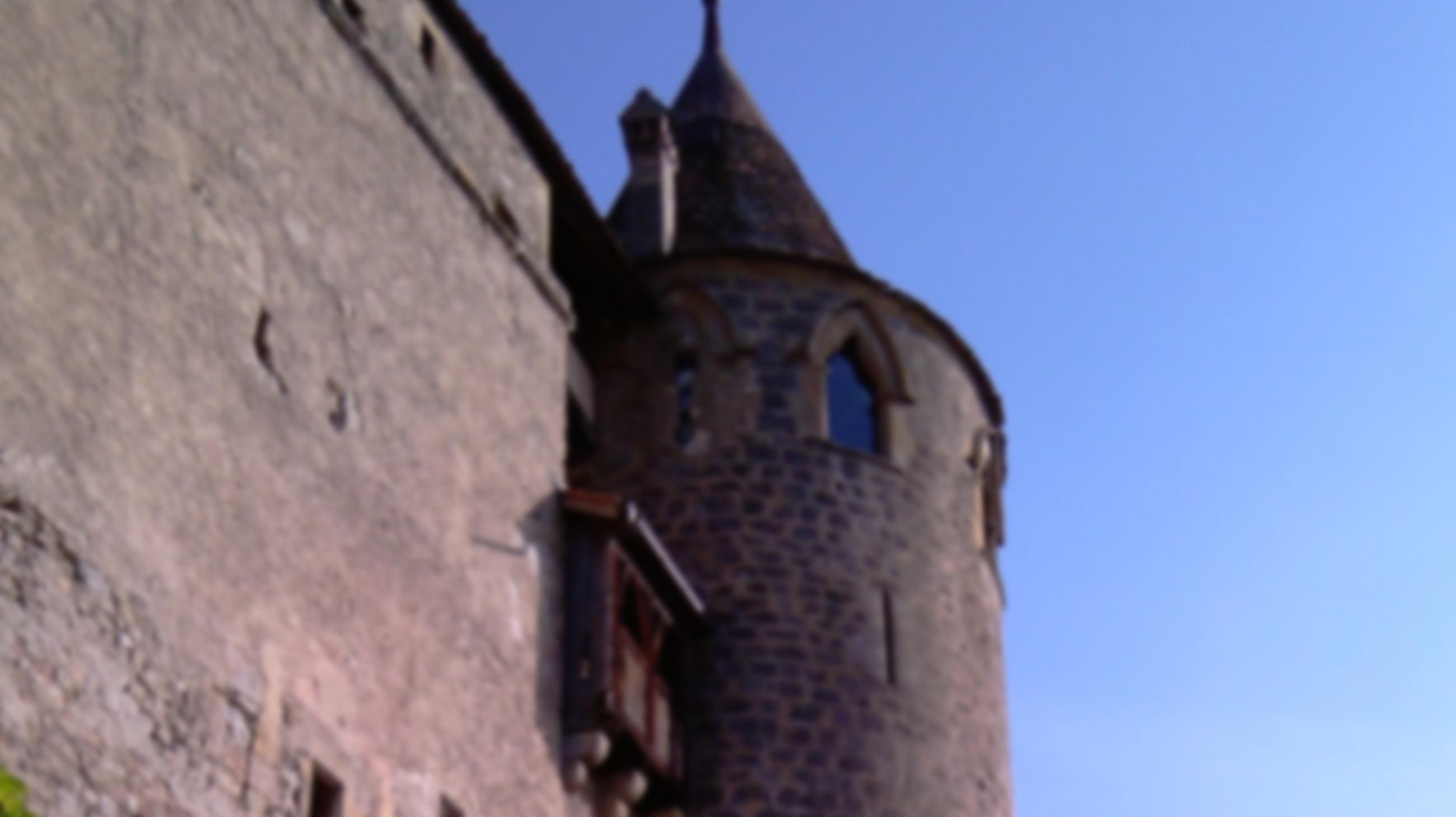 Association Médiévale Romande - Valorisation du patrimoine médiéval suisse romand